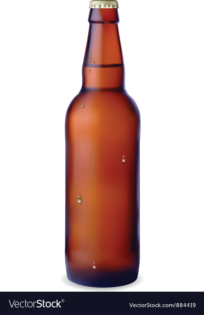 Dark bottle of beer vector
