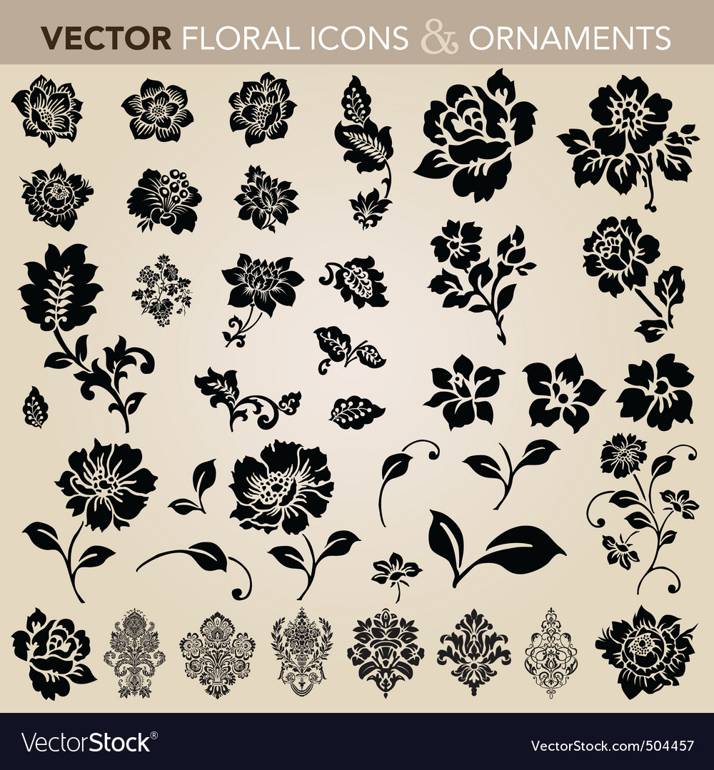 floral ornaments and icons vector