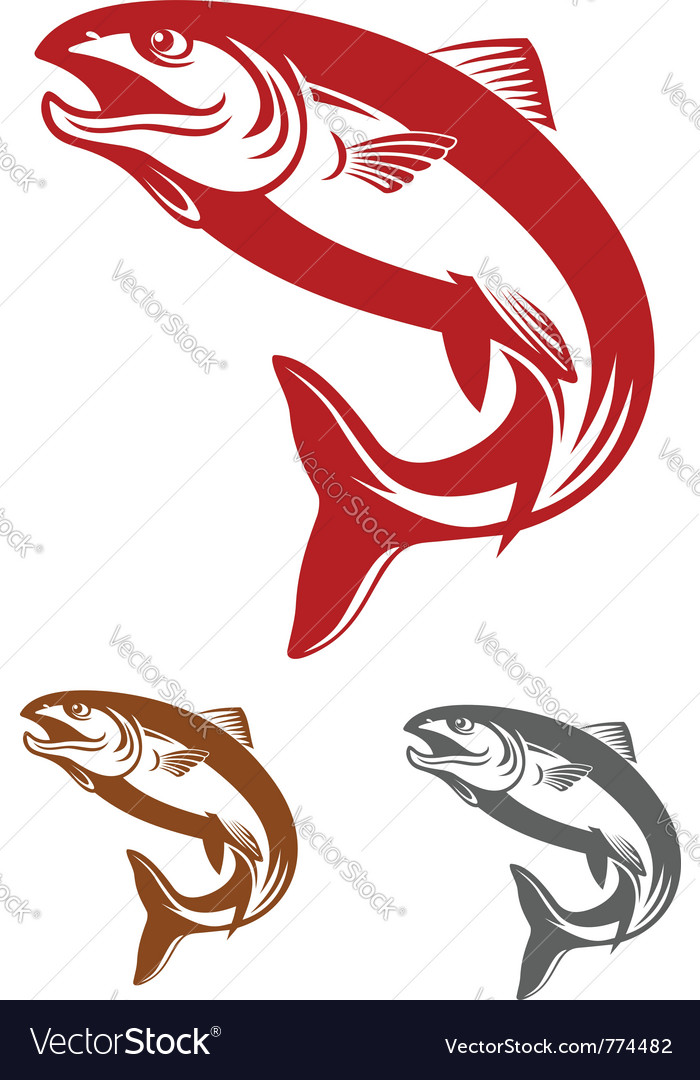 Salmon fish mascot vector