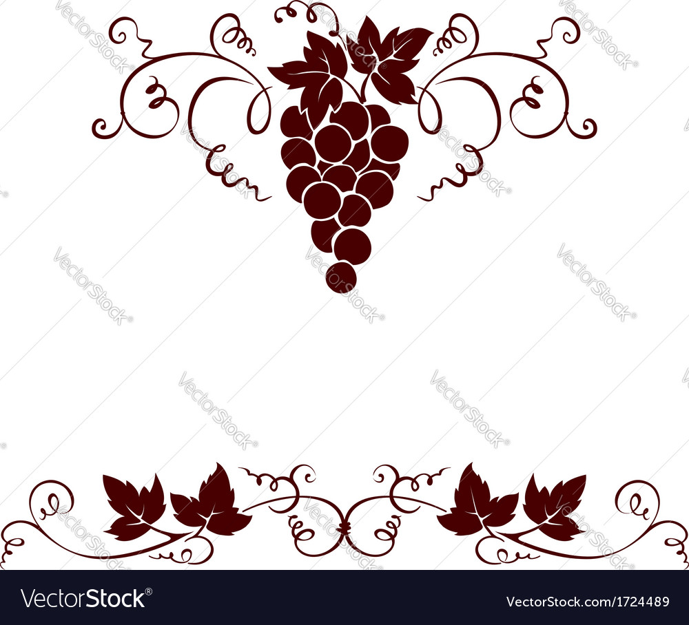 Set design elements - grape vector