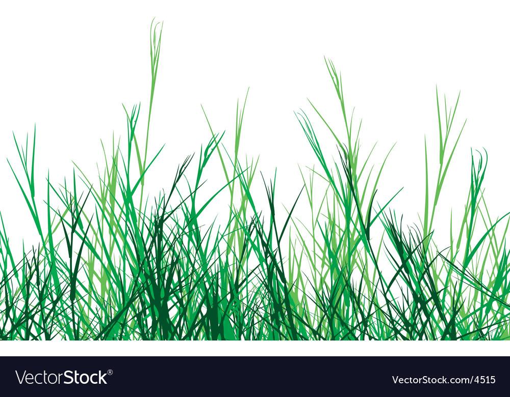 Rough grass vector