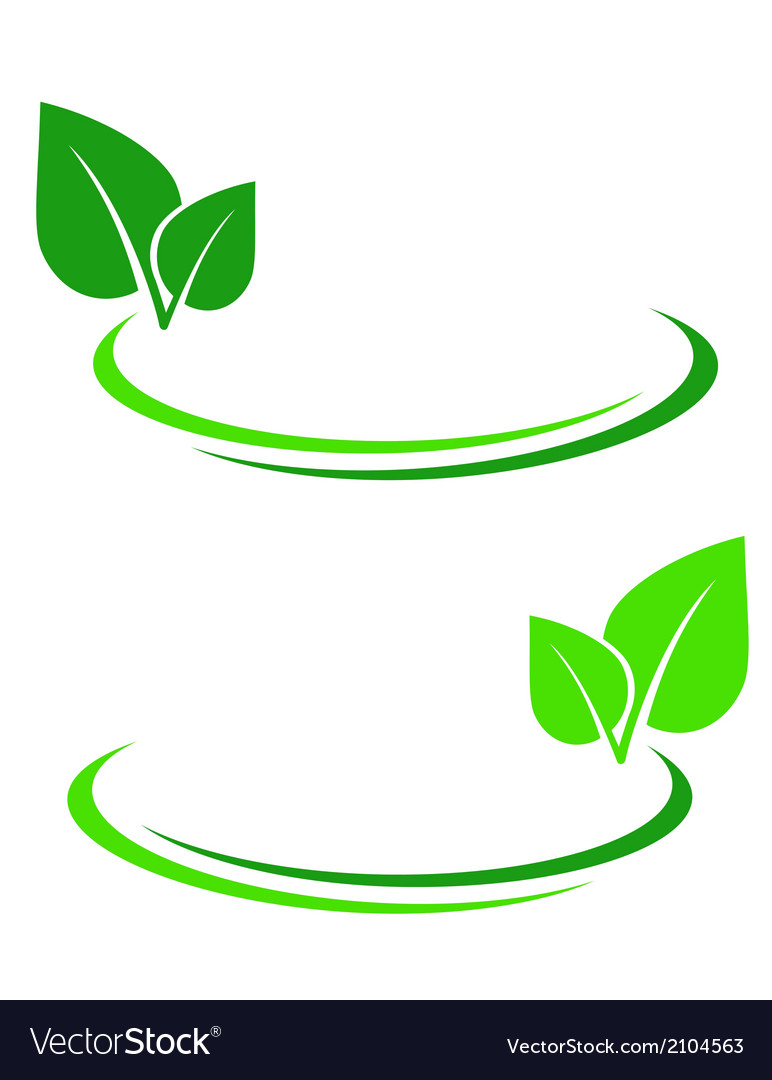 Background with green leaf vector