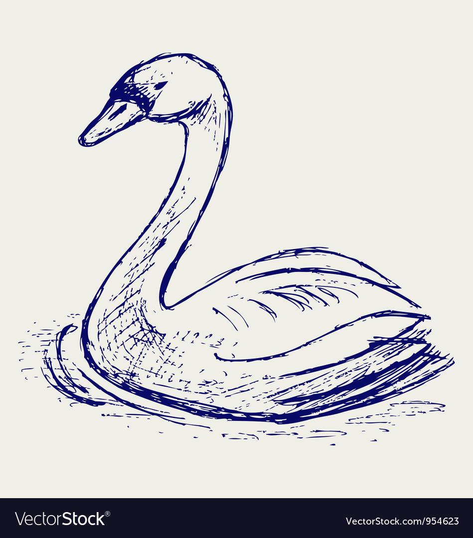 Swan sketch vector
