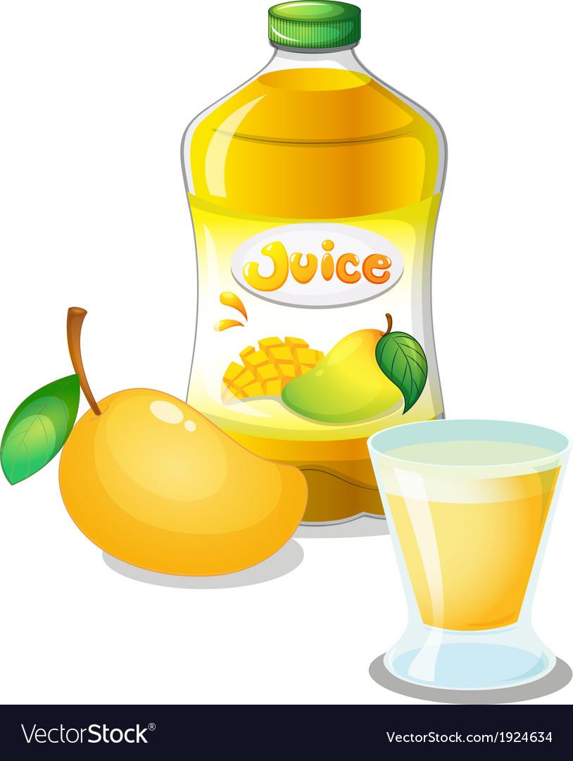 Mango juice drink vector