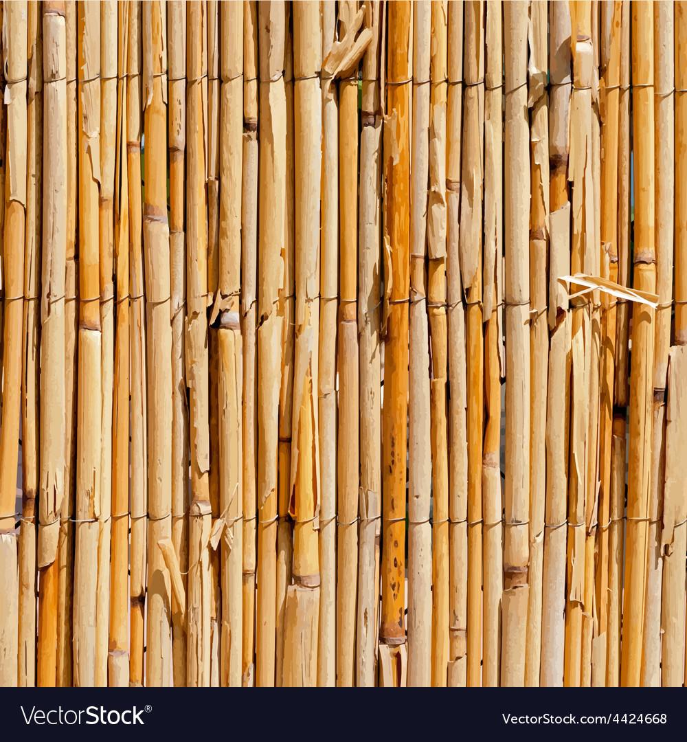 Wattle fence texture vector