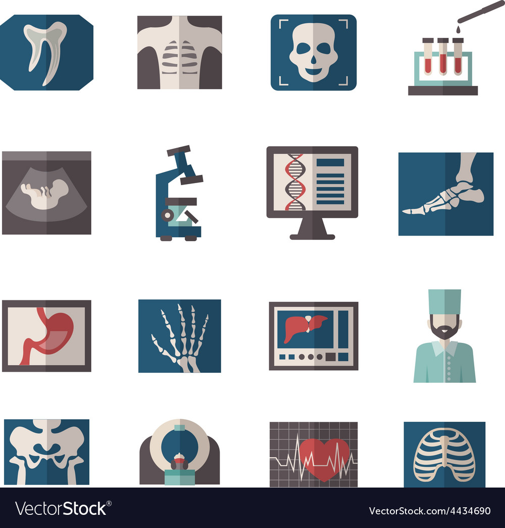 Ultrasound x-ray icons flat vector