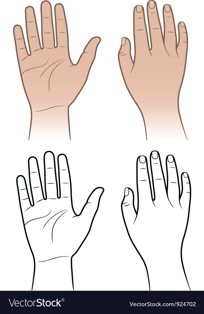Woman man hands isolated on white vector