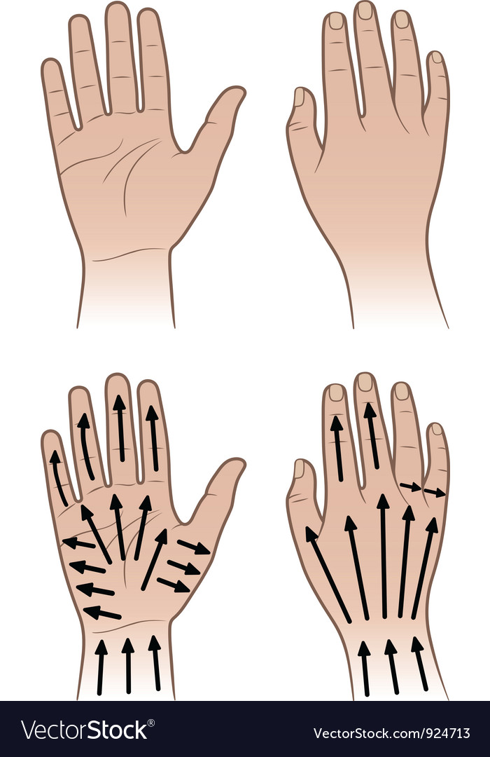 Woman man hands with massaging lines vector