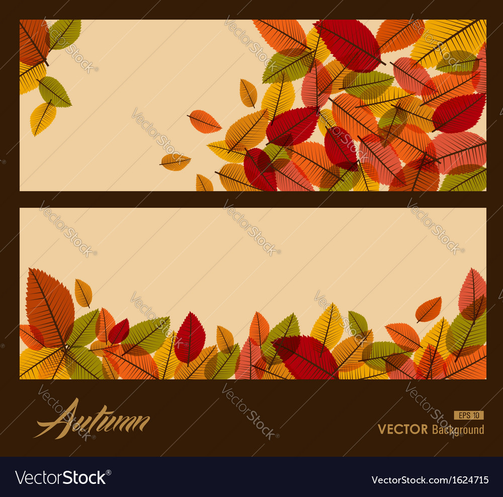 Autumn transparent leaves fall season background vector