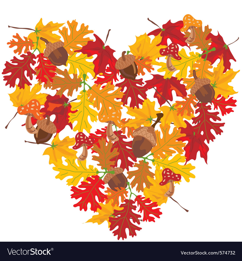 Fall heart with leaves and acorns vector