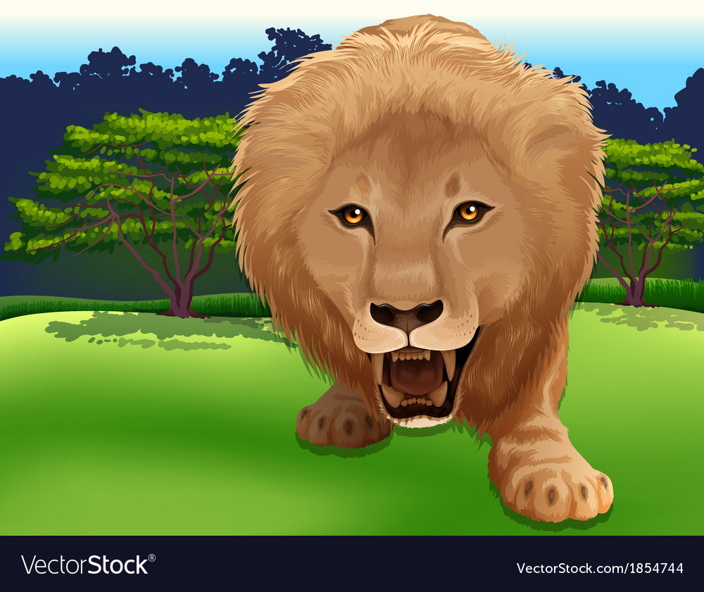 King of the jungle vector
