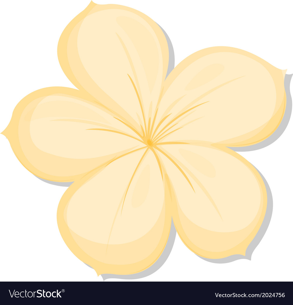 A five-petal yellow flower vector