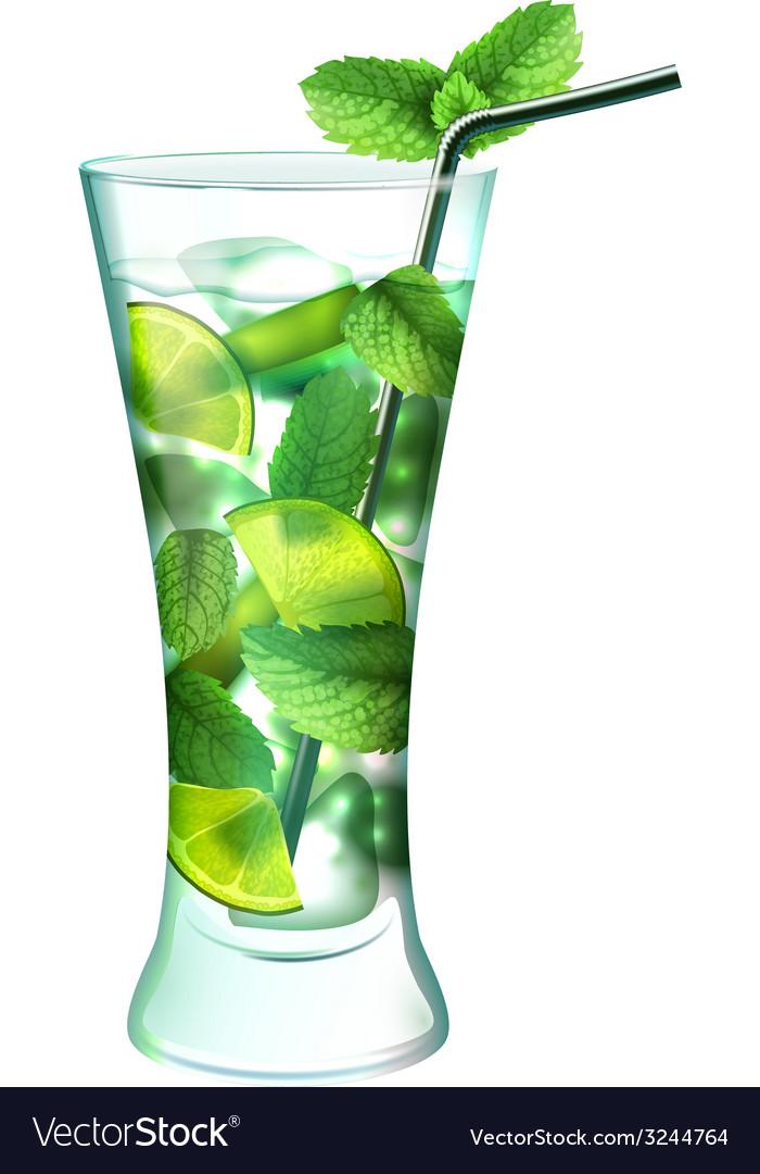 Mojito cocktail realistic vector