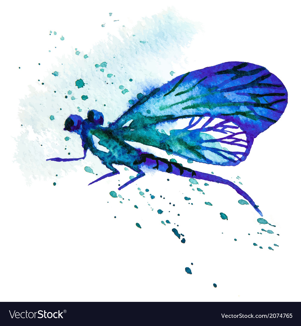 Blue watercolor dragonfly vector