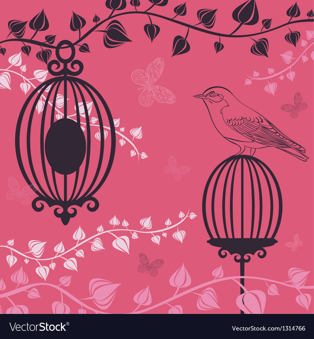 The of birdcage and butterflies vector