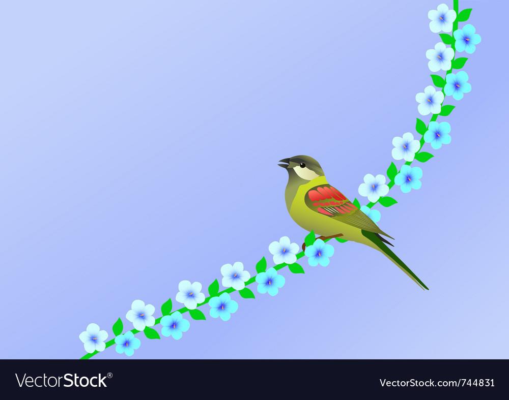 Nature bird vector