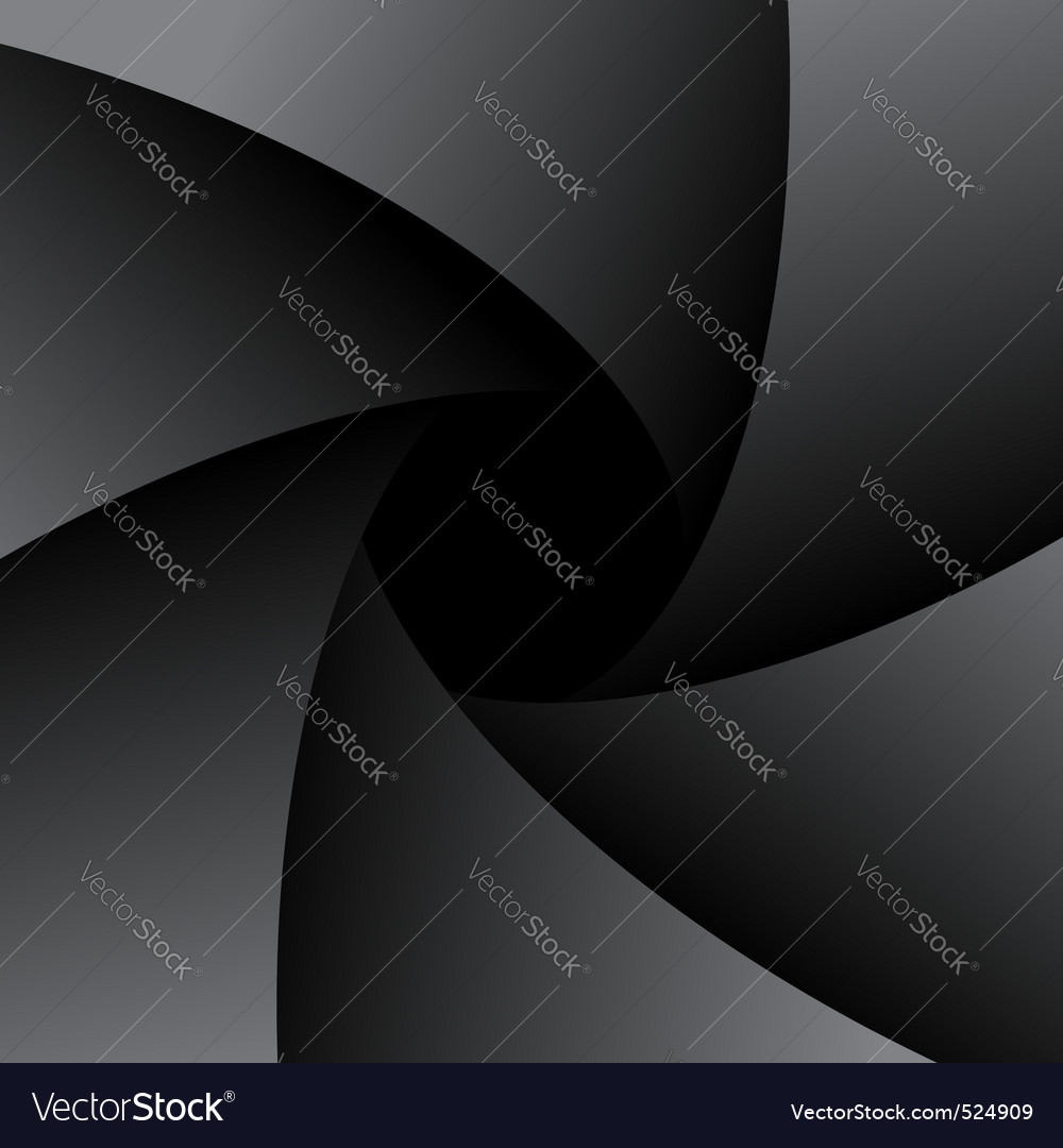 Diaphragm vector