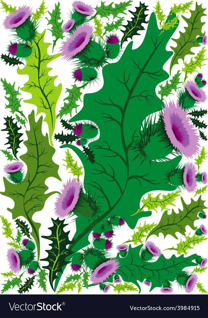 Beautiful decorative border of flowers thistle vector