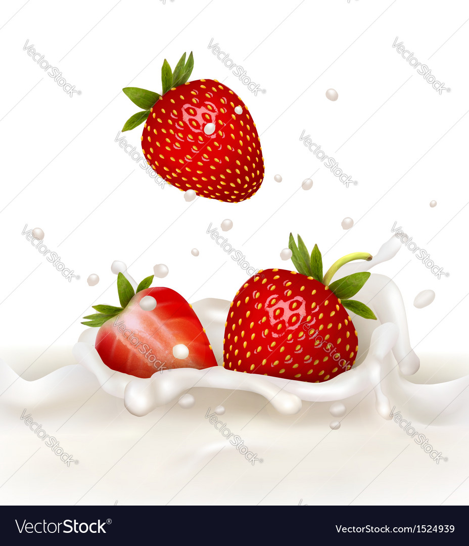 Red strawberry fruits falling into the milky vector