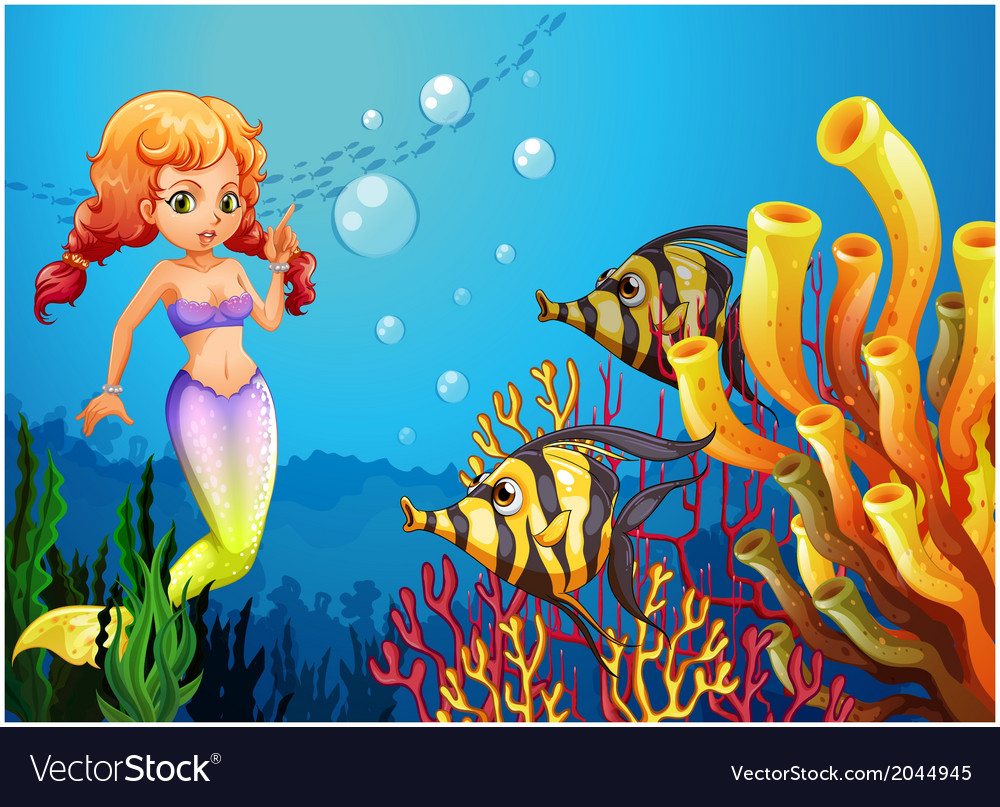 A mermaid watching the two fishes vector