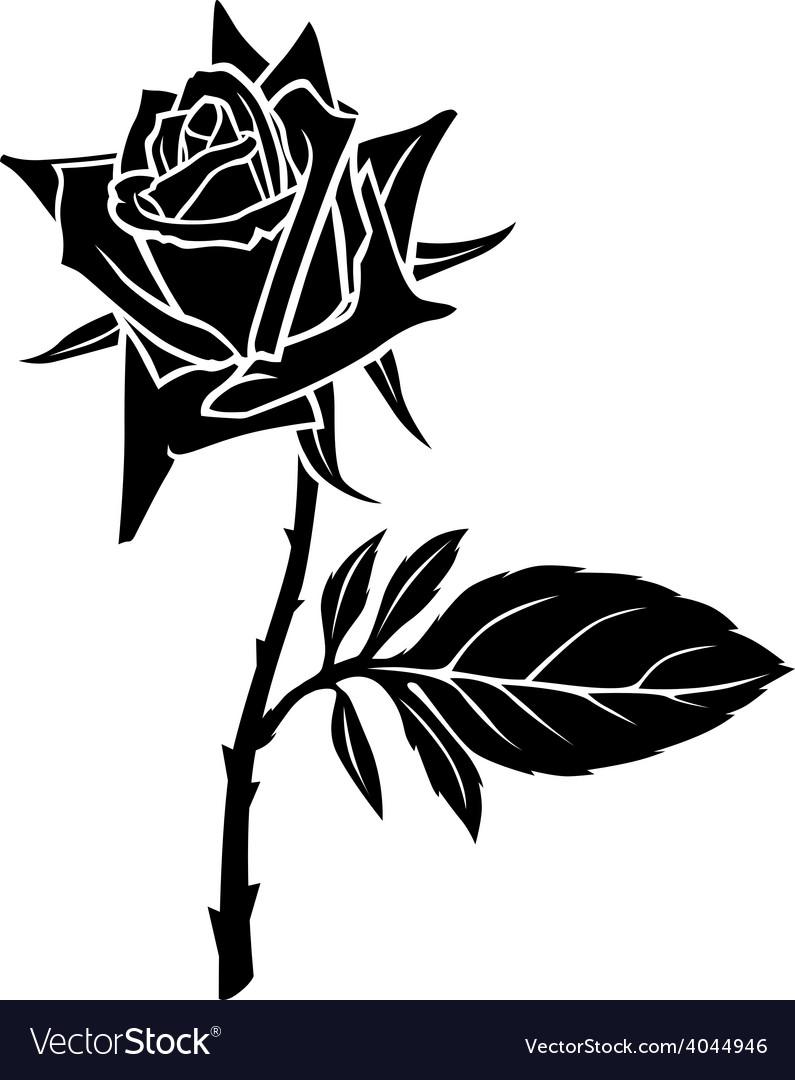 Rose one leaf vector