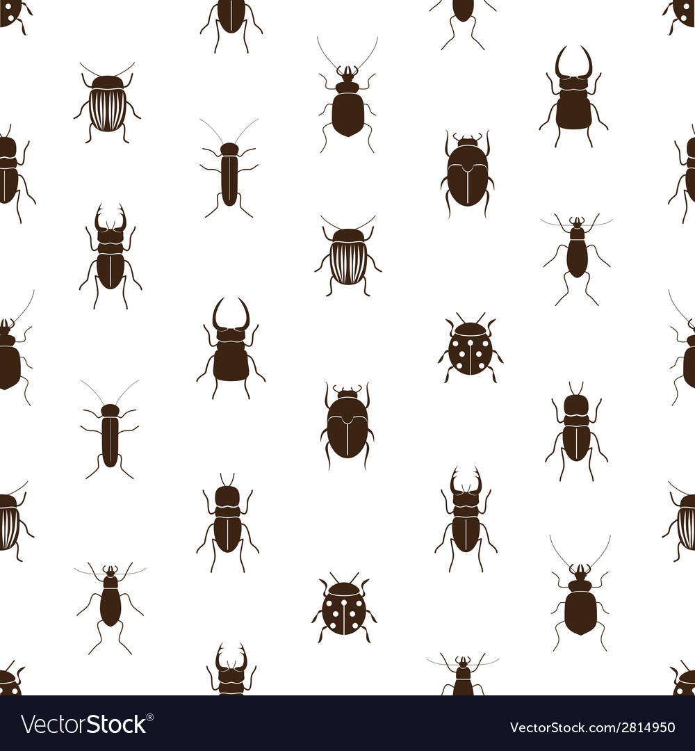 Bugs and beetles simple seamless pattern eps10 vector
