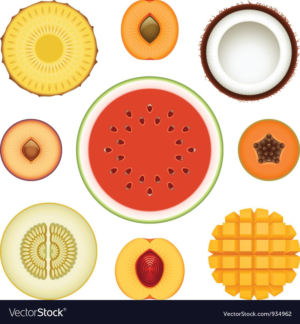 Fruit halves set vector