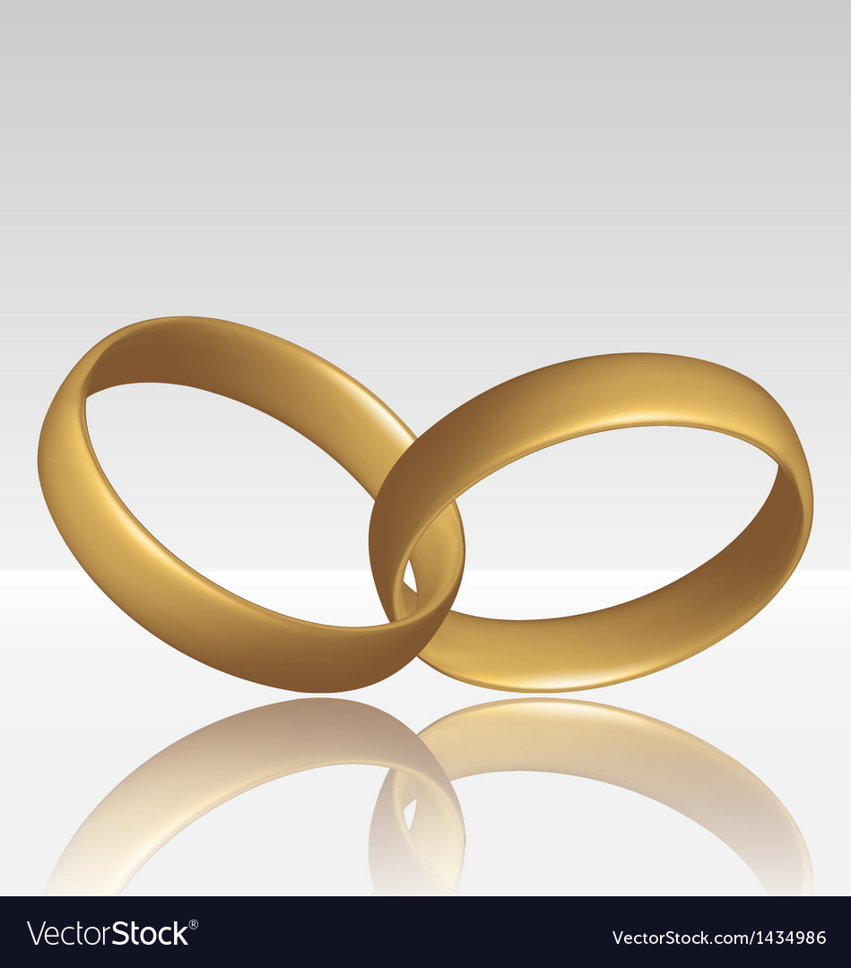 Jewelry two golden ring vector