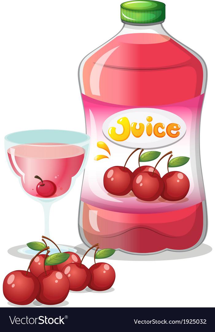 Cherry juice drink vector