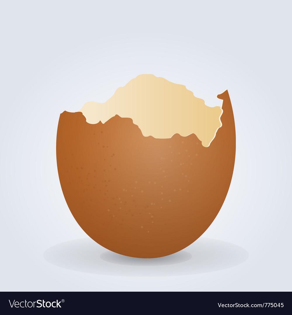Broken egg shell vector