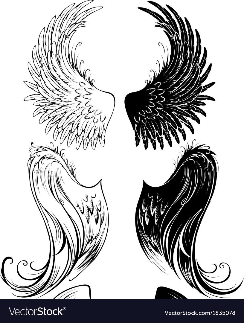 Stylized angel wings vector