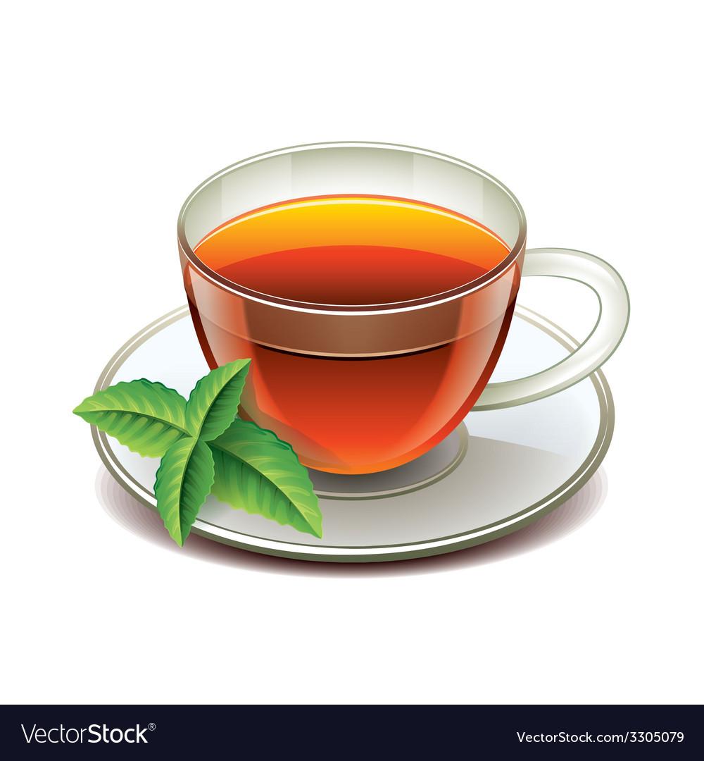 Black tea cup isolated vector