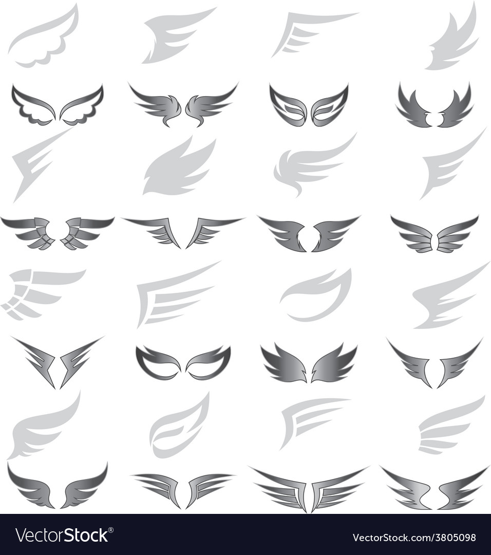 Wing art collection vector
