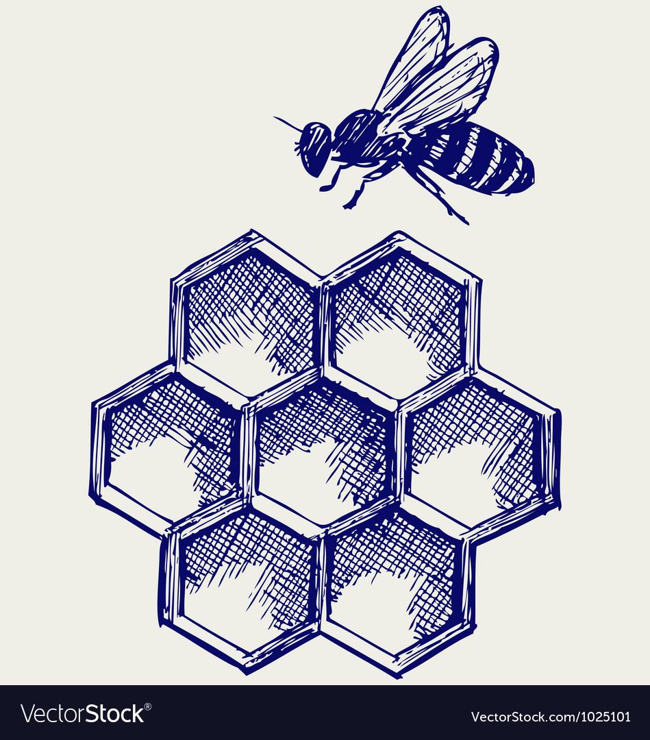 Working bee on honeycells vector