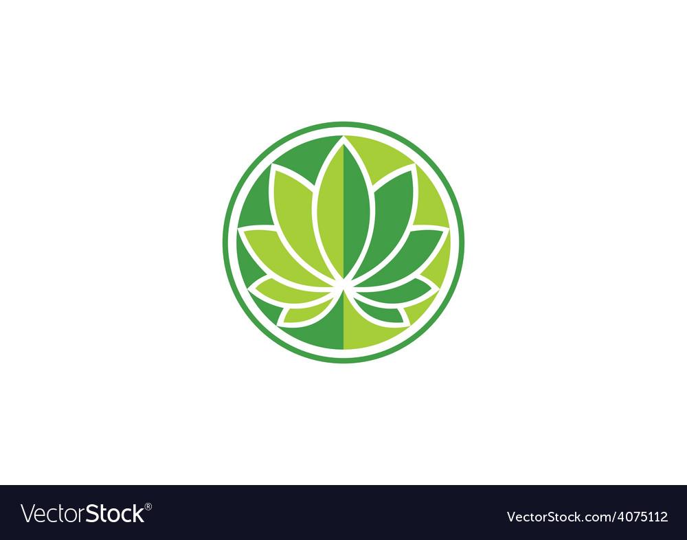 Leaf round lotus spa logo vector