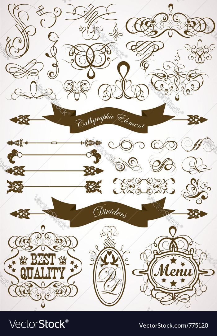 Collect calligraphic vector