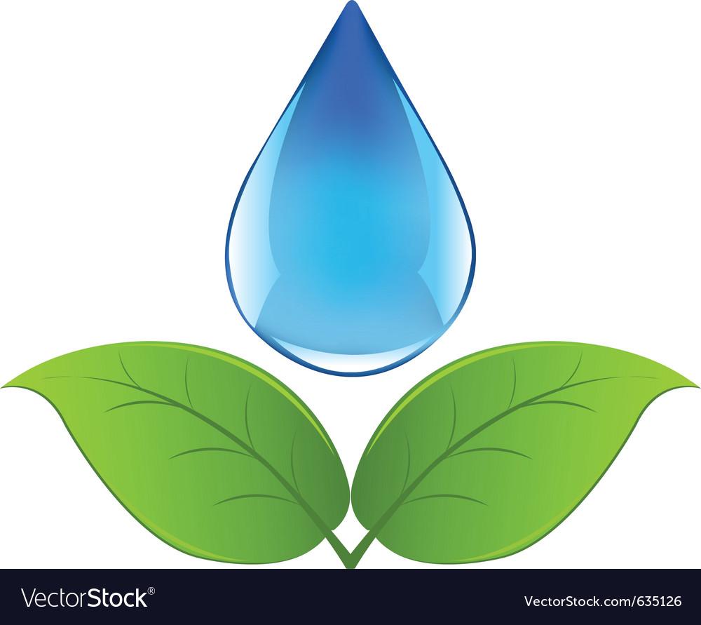 Drop of water vector