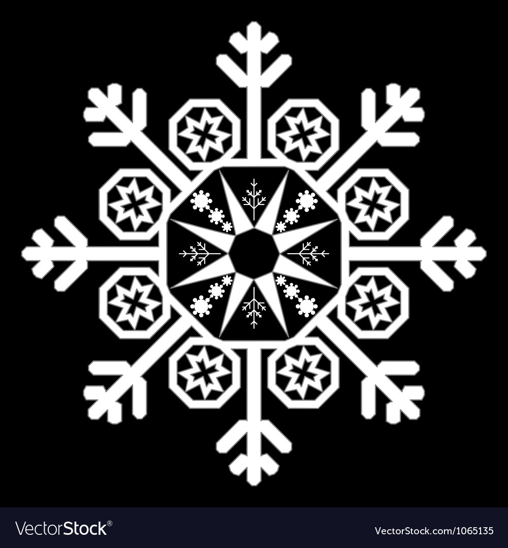 Single white snowflake vector