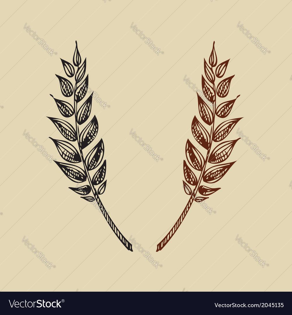 Wheat bakery design vector