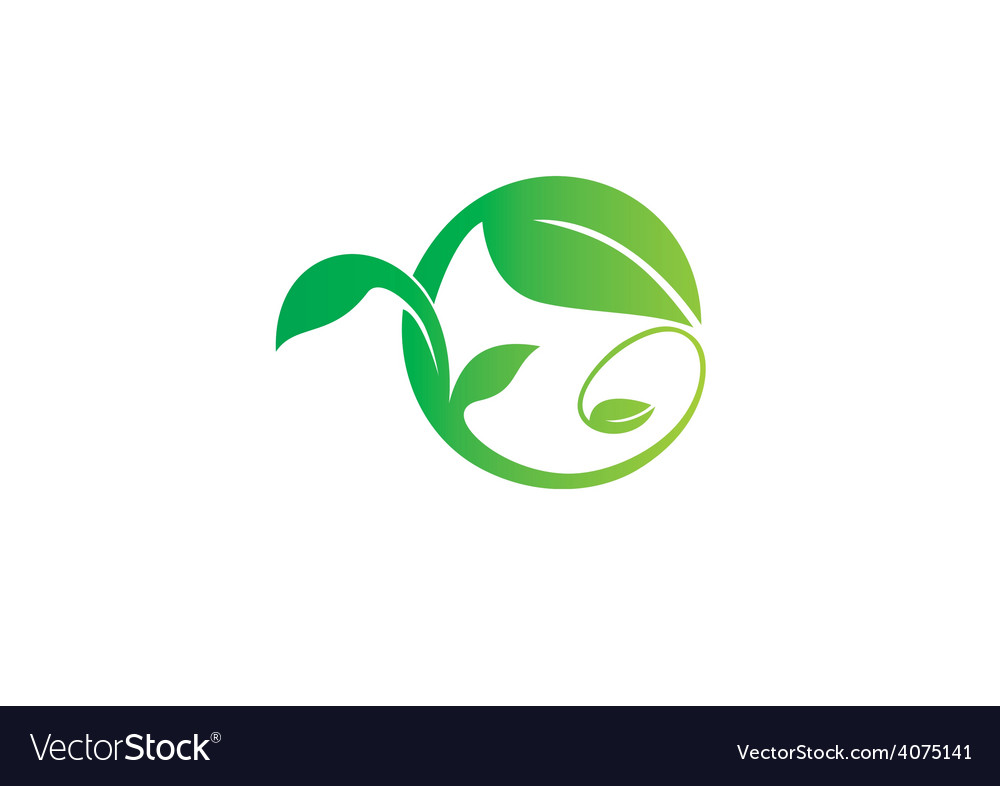 Leaf swirl ecology abstract logo vector