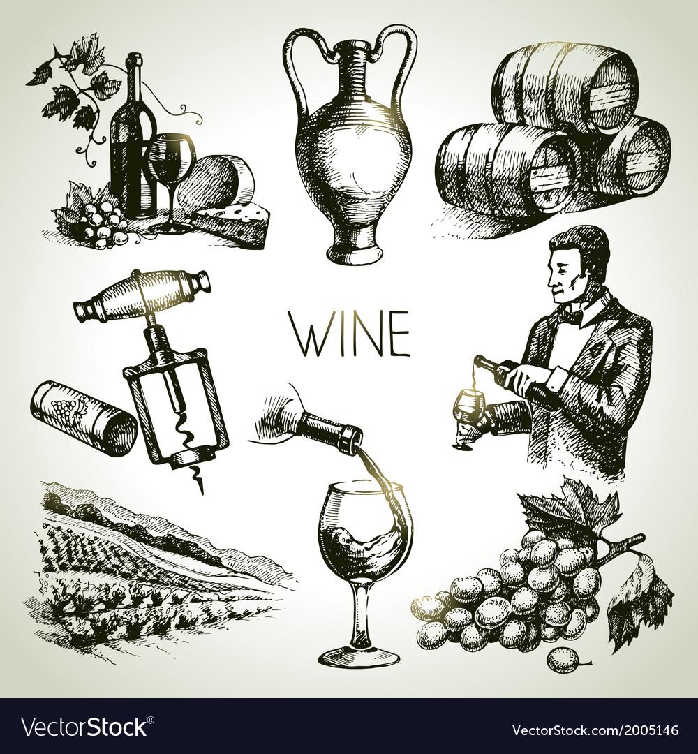 Hand drawn sketch wine set vector