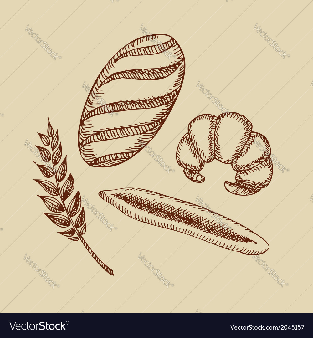 Set of bakery croissant bread baguette and wheat vector