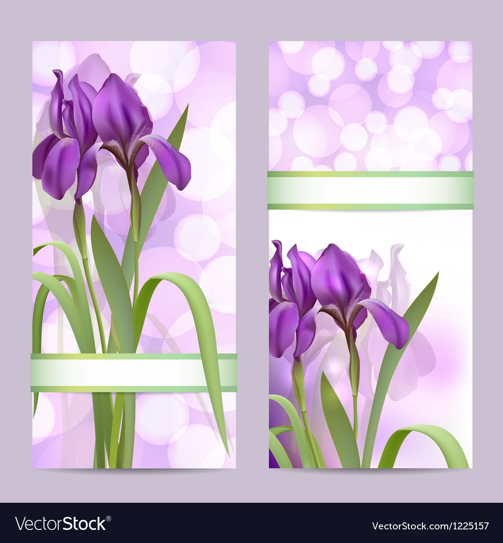 Set of spring banners with purple iris flowers vector
