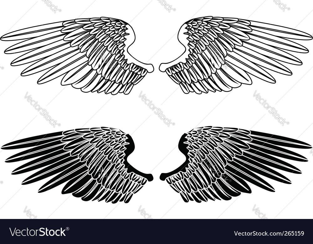Spread wings vector