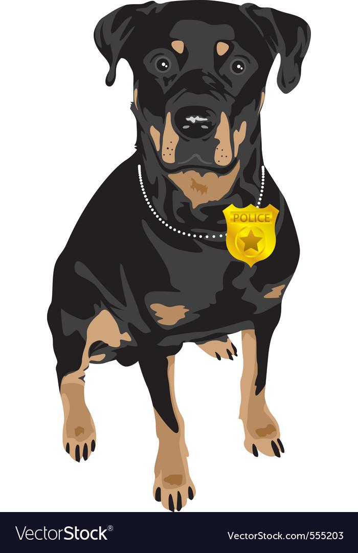 Black dog vector