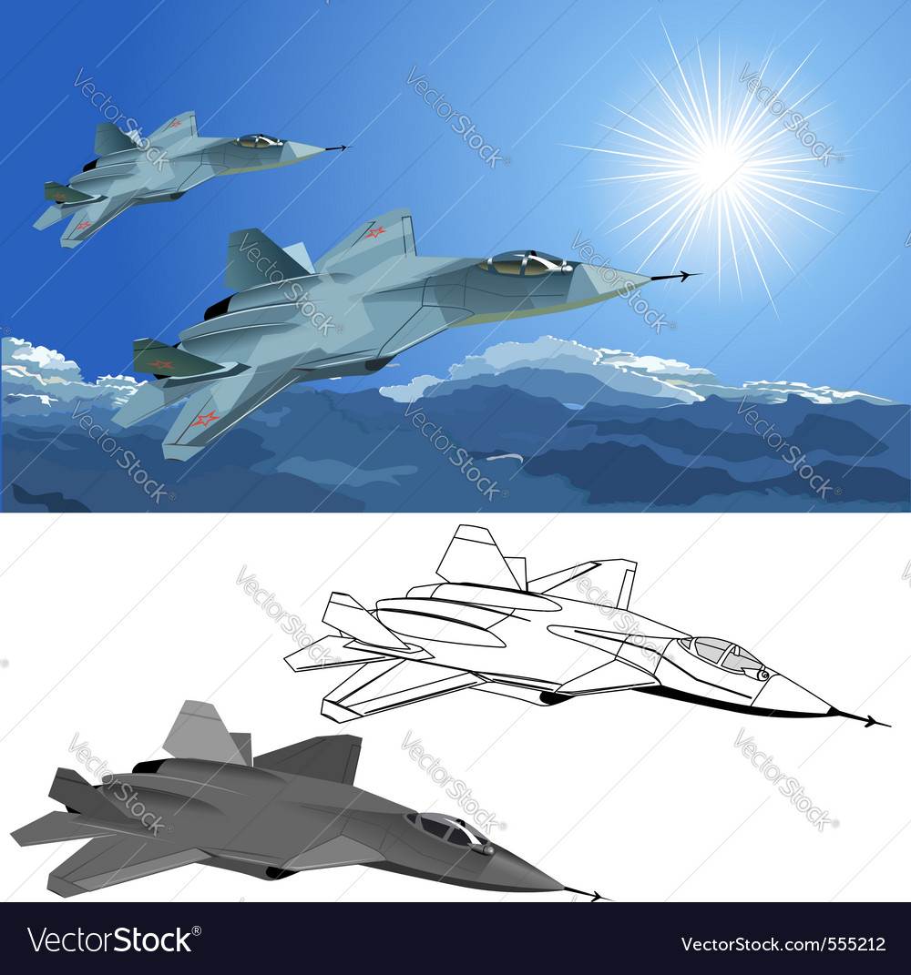 Stealth fighter vector