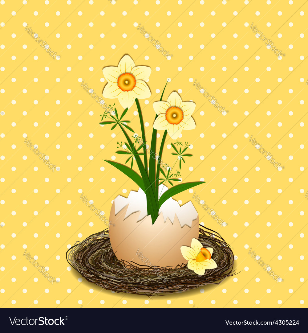 Easter holiday yellow daffodil flower vector