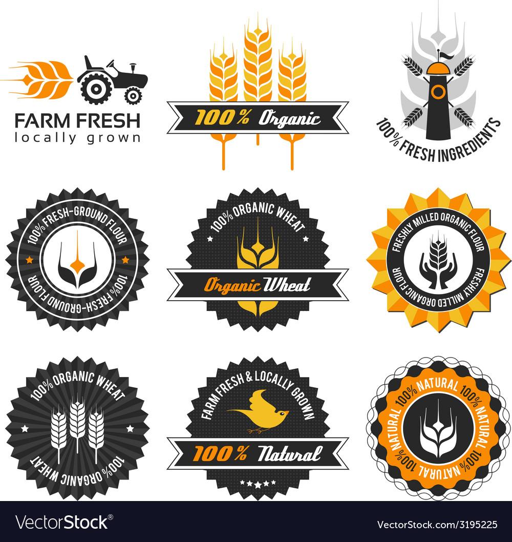 Wheat production label set vector