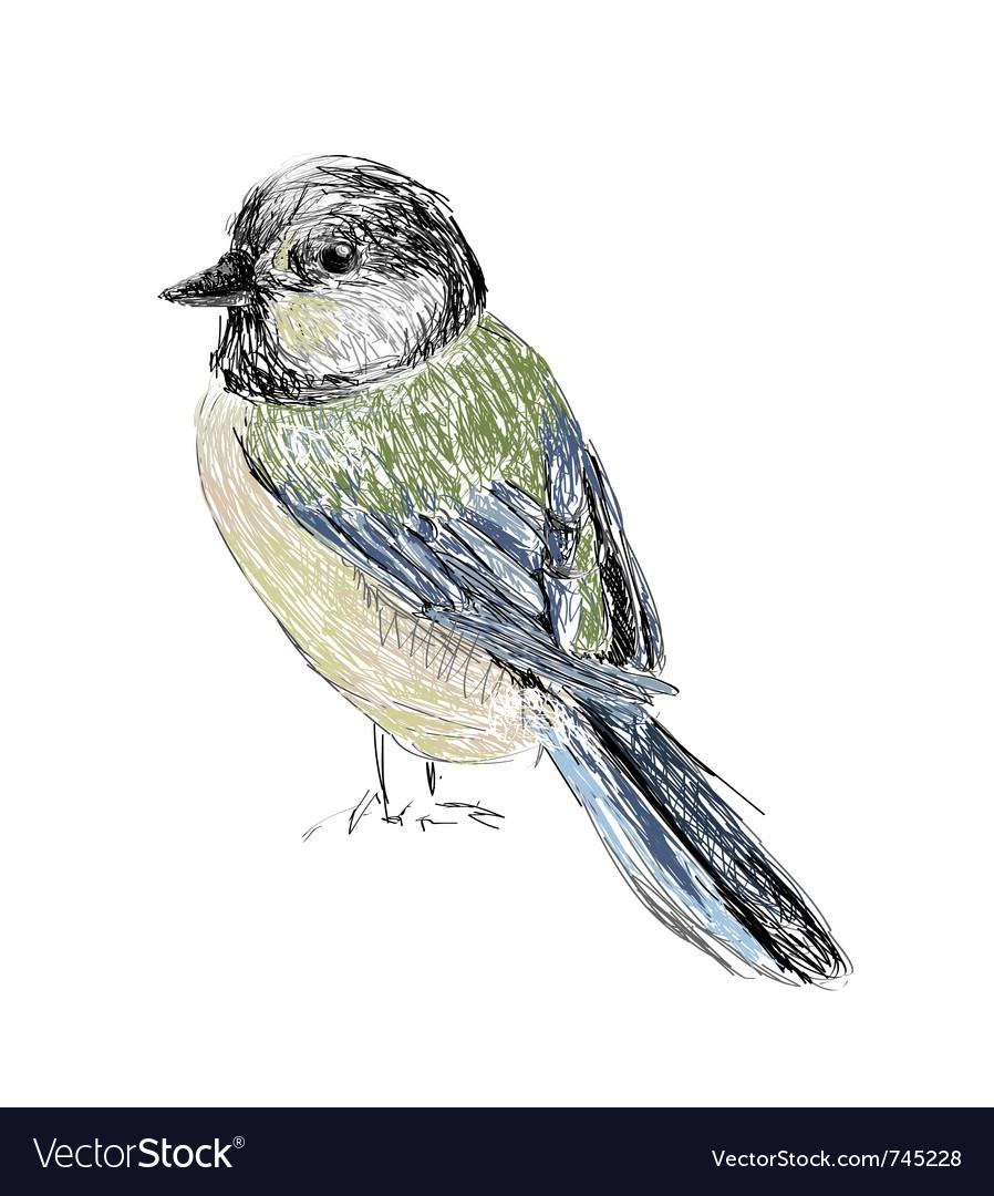Bird hand drawn vector