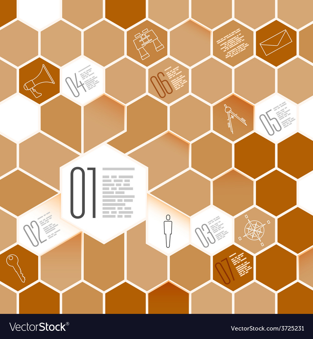Honeycomb infographic design elements with icon vector
